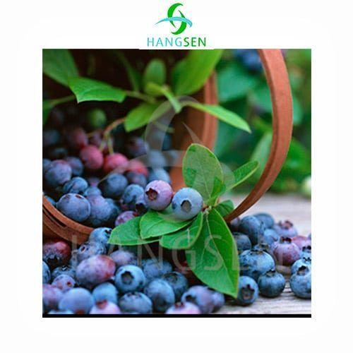 Blueberry-(Arándano)-Hangsen-Tapervaper