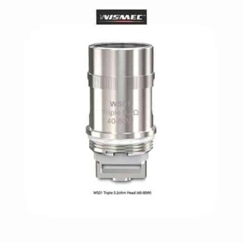 Wismec-WS01--Tapervaper
