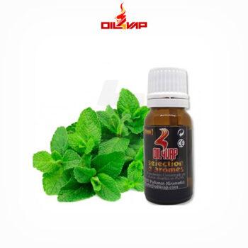 aroma-menta-10ml-oil4vap-tapervaper