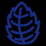 icono-mentolados-tapervaper