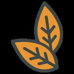 icono-tabaquiles-tapervaper